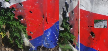 MH17 bullet holes